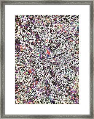 Stars Give Birth To Color Framed Print by Vincent Alexander Booth