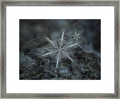 Stars In My Pocket Like Grains Of Sand Framed Print