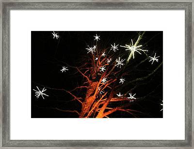 Stars In The Tree Framed Print