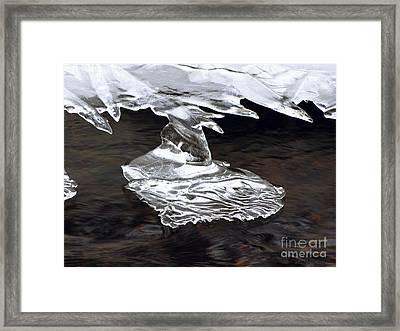 Starship Framed Print