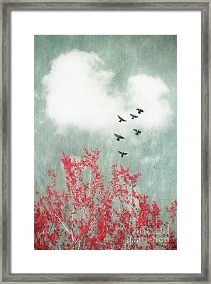 Startled Framed Print by Priska Wettstein