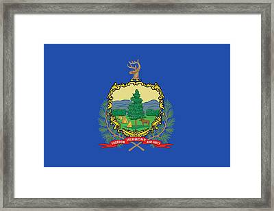 State Flag Of Vermont Framed Print by American School