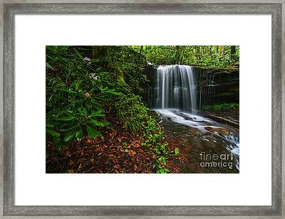 State Flower And Waterfall Framed Print by Thomas R Fletcher