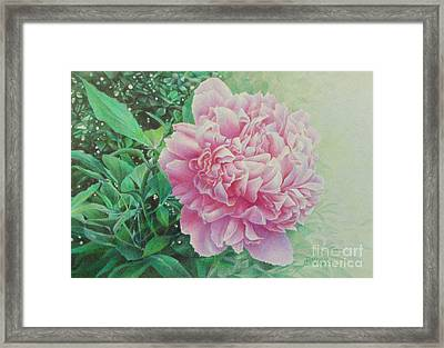 State Treasure Framed Print by Pamela Clements
