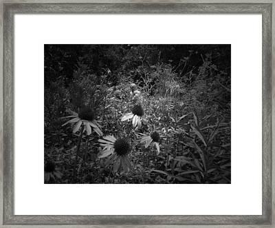 Statue In Field Of Flowers Framed Print by Megan Verzoni