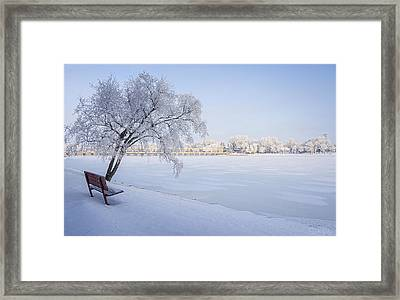 Stay A While Framed Print