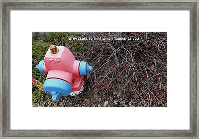 Stay Close To That Which Nourishes You Framed Print by Kirk Griffith