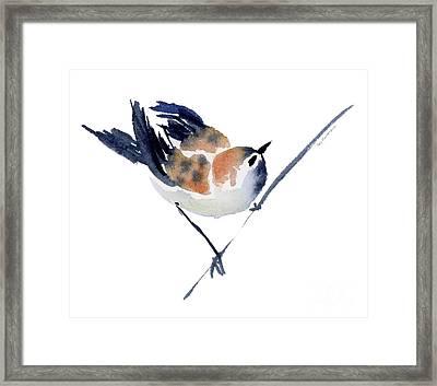 Steadfast Framed Print by Amy Kirkpatrick