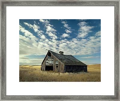 Steadfast On Little Alkali Flat Framed Print by Jerry McCollum