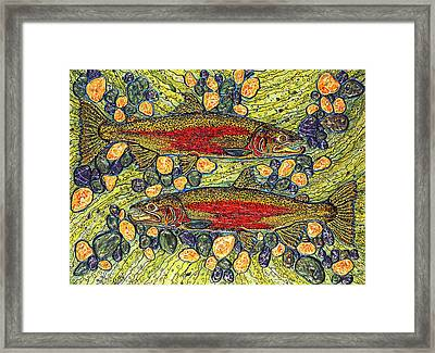Stealhead Trout Framed Print