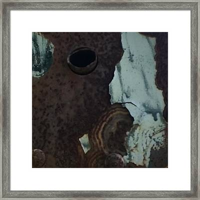 Rusted Away Framed Print by Kimberly  W