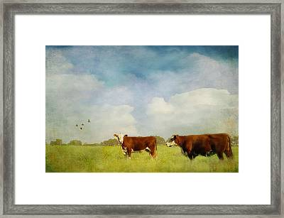 Framed Print featuring the photograph Steamy Hot Summer Days by Jan Amiss Photography