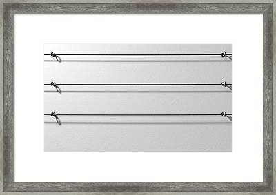 Steel Cable Display Wall Framed Print