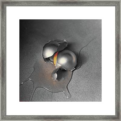 Steel Life Framed Print by Daniel Furon
