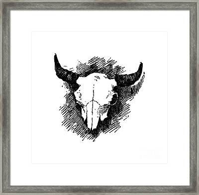 Steer Skull Tee Framed Print by Edward Fielding