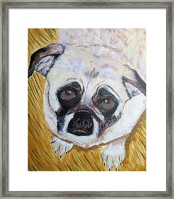 Framed Print featuring the painting Stella by Barbara Giordano