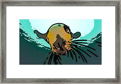 Steller Sea Lion Framed Print by Lanjee Chee