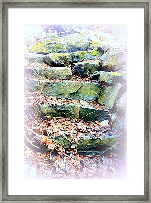 Step By Step The Nature Lets You In  Framed Print by Hilde Widerberg