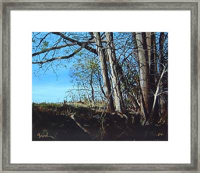 Step Into Morning Framed Print by William  Brody