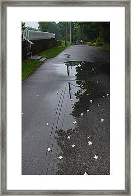 Step Into My Puddle Said The Spider To The Fly Framed Print by Ron Sylvia