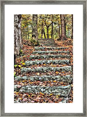 Framed Print featuring the photograph Step Into The Woods by Debbie Stahre