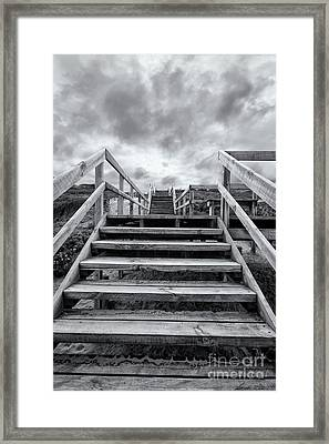 Framed Print featuring the photograph Step On Up by Linda Lees