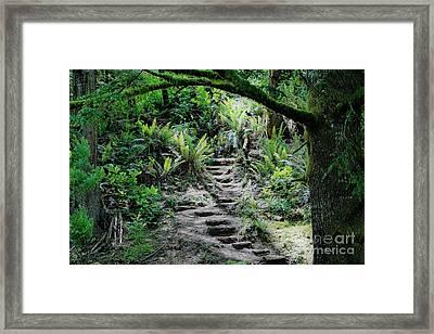 Step On Up Framed Print