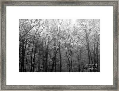 Stepping Out Framed Print