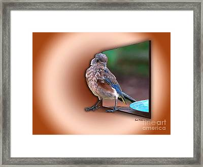 Stepping Out Into The Spotlight Framed Print by Sue Melvin