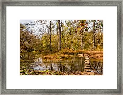 Stepping Stones At Rock Spring - Natchez Trace Framed Print by Debra Martz