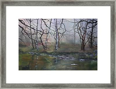Stepping Stones On Cannock Chase Framed Print by Jean Walker