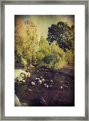 Stepping Stones To My Heart Framed Print by Laurie Search
