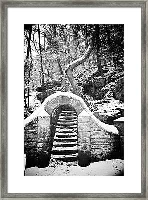 Steps Along The Wissahickon Framed Print by Bill Cannon