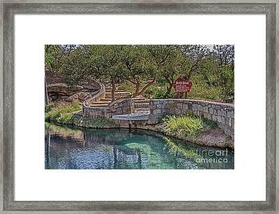 Framed Print featuring the photograph Steps Leading To The Blue Hole by Sue Smith