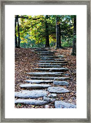 Steps Of Fall Framed Print