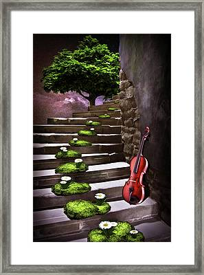 Steps Of Happiness Framed Print by Mihaela Pater