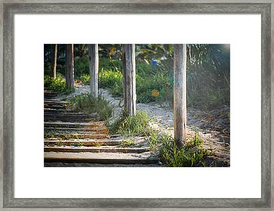 Steps Off The Beach Framed Print