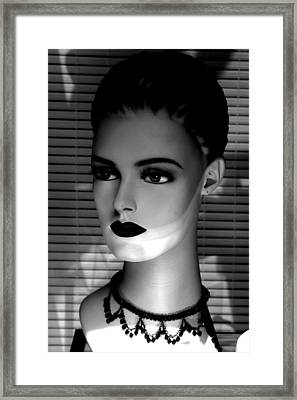 Stern But I Can Be Framed Print by Jez C Self