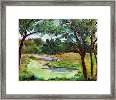 Stevenson Rd. Pond Framed Print