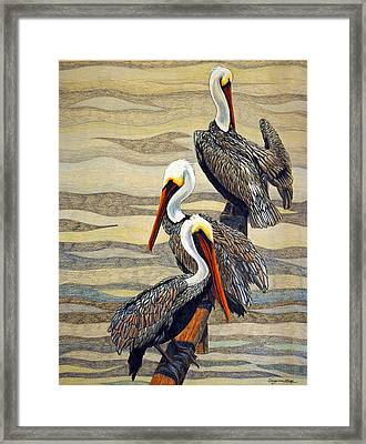 Steves Fishing Buddies Framed Print by Suzanne McKee