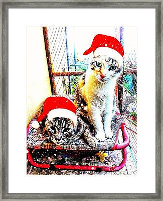 Stevie Mouse And Emmy Waiting For Christmas Framed Print