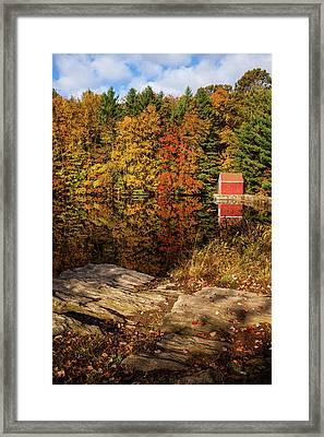 Stewart Woods Autumn Framed Print by Karol Livote
