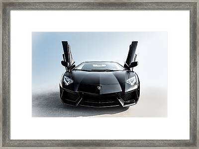 Stick 'em Up Framed Print by Douglas Pittman
