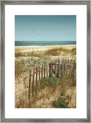 Stick Fences On Dunes Framed Print by Carlos Caetano