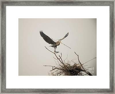Framed Print featuring the photograph Stick Man by David Bearden