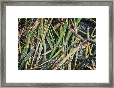 Stick Pile At Retzer Nature Center Framed Print by Jennifer Rondinelli Reilly - Fine Art Photography