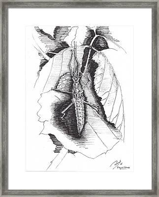 Stick Framed Print by Ramiliano Guerra