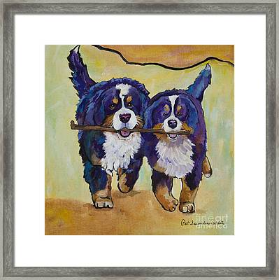 Stick Together Framed Print by Pat Saunders-White