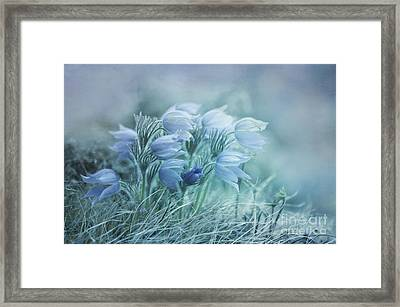Stick Together Framed Print by Priska Wettstein