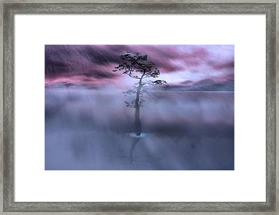 Stick Together The Storm Will Pass Framed Print by Gray  Artus